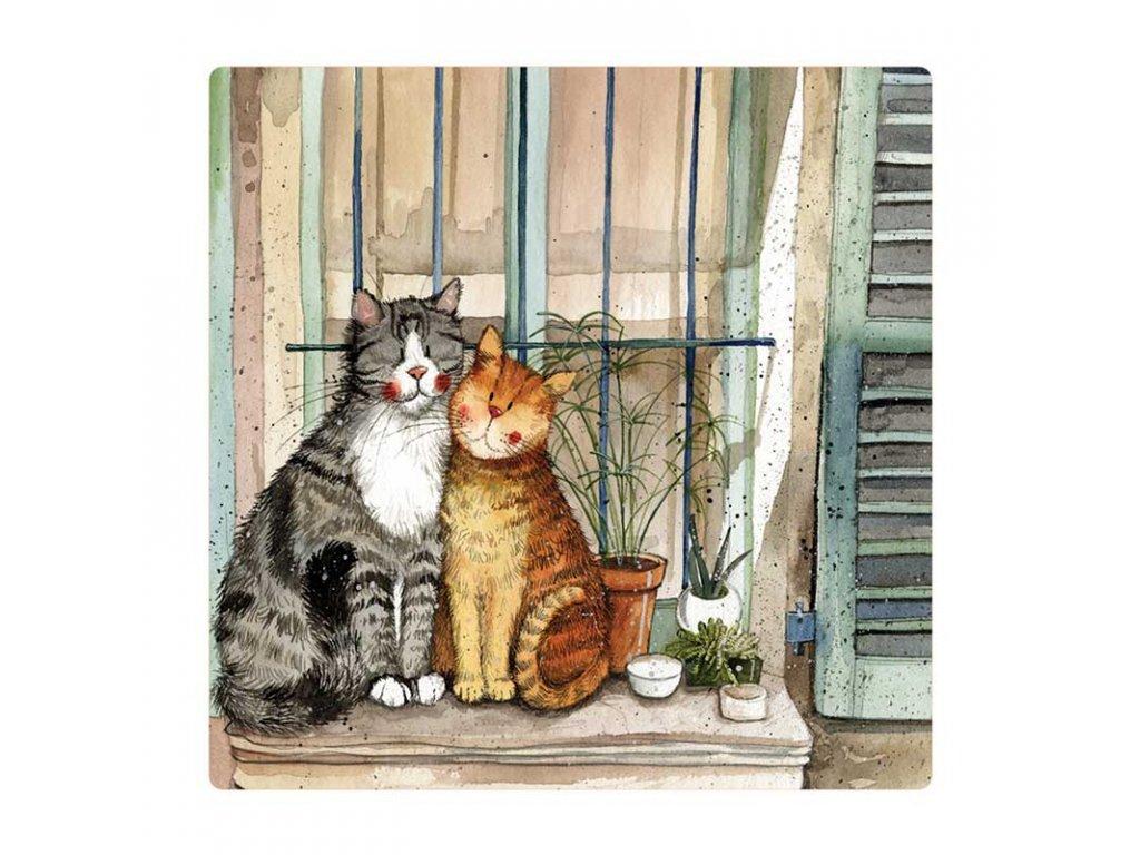 magnetka kočka s kočkou kočičí na okně alex clark