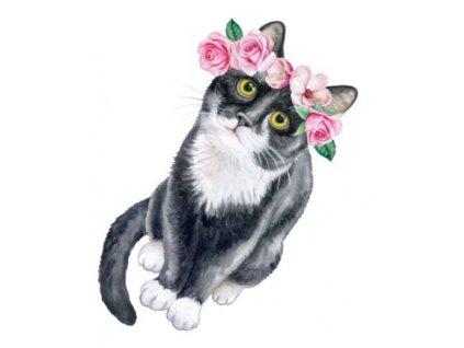 tetování kočka tetovačka květiny