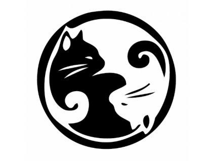 auto jin jang kočka 1