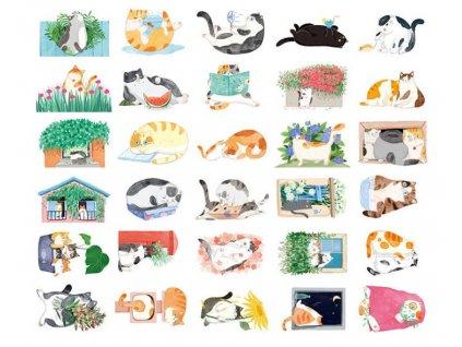 pohled kočka s kočkou kočičí pohlednice kopie (2)