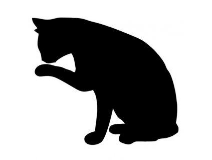 Samolepka na auto čistotná kočka