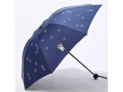 deštník kočka kočičí s kočkou