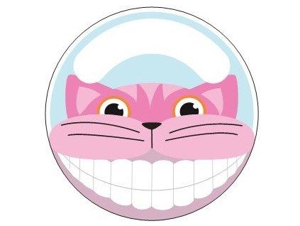 držák na zubní kartáček kočka kočičí