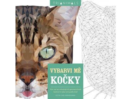 kočka omalovánky pro dospělé kočičí podle čísel
