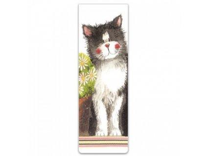 magnetická záložka kočka kočičí Alex Clark s kočkou kocour