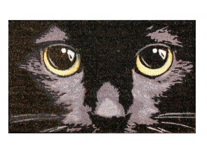 rohožka kočka čená s kočkou kočičí velký kokos