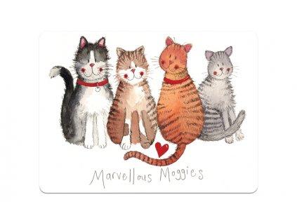prostírání s kočkami s mačkou kočičí mačacie korek alex clark 3