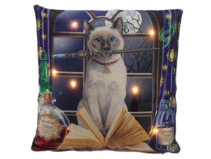 polštář kočka s kočkou kouzelnice magie lisa parker mačka s mačkou