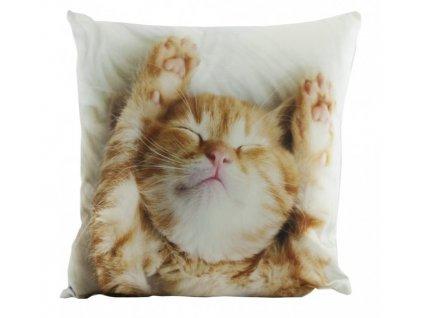 povlak na polštář mikroplyš kočka s kočkou kočičí kotě