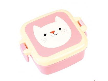 krabička cookie kočka s kočkou kočičí na svačinu