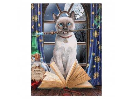 obraz kočka kouzelnice plátno lisa parker