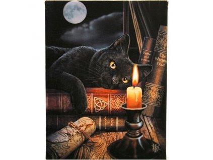 obraz kočka s kočkou kočičí knihy plátno lisa parker