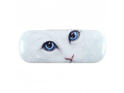 pouzdro na brýle s kočkou kočka kočičí bílá