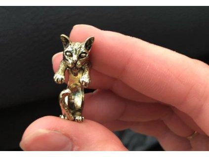 prsten kočka s kočkou kočičí anatomický 5