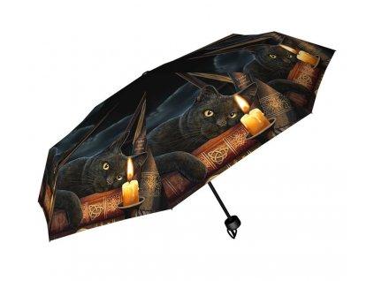 deštník kočka s kočkou kočičí Lisa Parker