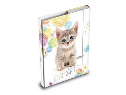 box na sešity kočka s kočkou kočičí