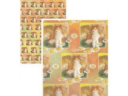 balicí papír kočka s kočkou kočičí alex clark