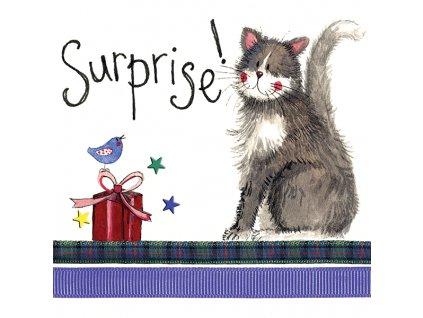 přání kočka s kočkou kočičí alex clark překvapení dárek