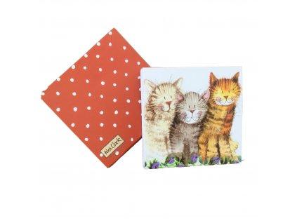 trhací bloček kočka s kočkou kočiči 6