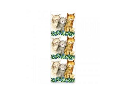 magnetická záložka tři kočka s kočkou kočičí alex clark