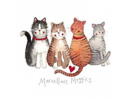 přání blahopřání kočka s kočkou kočičí 4 alex clark