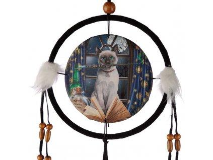 lapač snů kočka s kočkou kočičí lisa parker kočka kouzelnice 2