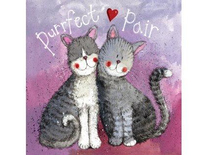 blahopřání přání kočka s kočkou kočičí zamilované srdce Alex Clark dvě kočky