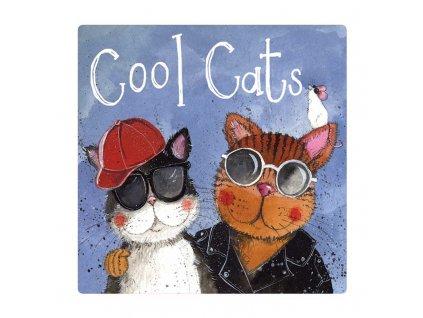 magnetka kočka s kočkou kočičí kocouři Alex Clark
