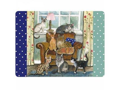 prostírání kočka s kočkou kočičí 8 koček Alex Clark
