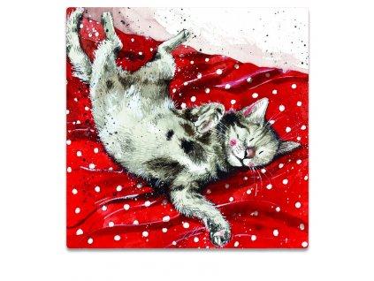 magnetka kočka s kočkou kočičí červené puntíky alex clark