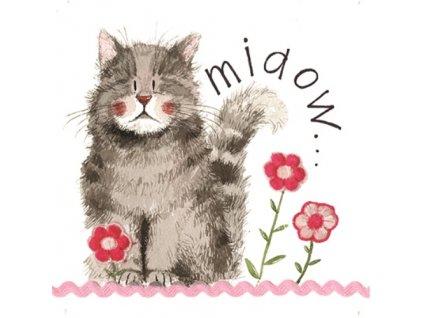 přání blahopřání kočka s kočkou kočičí květiny