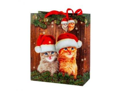 dárková taška kočka s kočkou kočičí čepice jmenovka