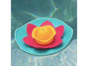 quut plavajuca kvetinka lili11