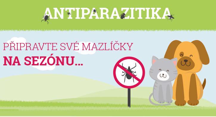Antiparazitika aneb jak chránit svého miláčka před parazity
