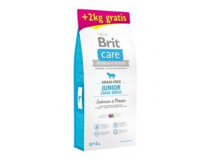 Brit Care Dog Grain-free Junior LB Salmon&Potato12+2kg