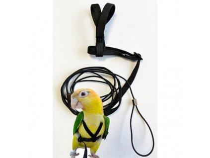 Kšandy s vodítkem pro papoušky S