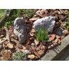 Okrasná kůra pro hezčí zahradu