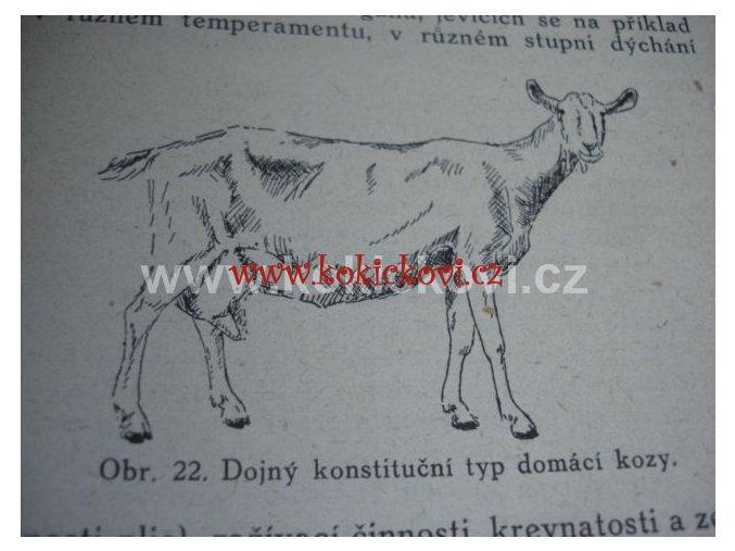 O vadách a nemocech koz se zřetelem ke krmení 1941