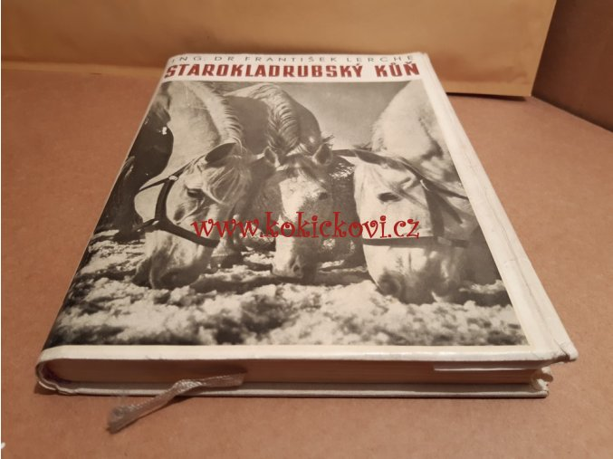 STAROKLADRUBSKÝ KŮŇ LERCHE 1956 CHOV KONÍ