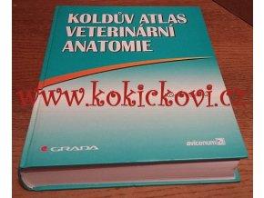 ATLAS VETER. ANATOMIE KOLDA Grada 1999