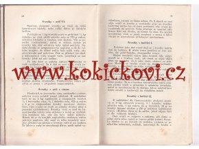 České švestky v kuchyni SLIVOVICE 1917 Amalie Bláhová