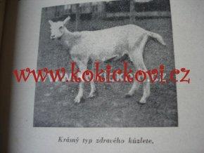 UŽITKOVÝ CHOV KOZ - PŘÍRUČKA 1941