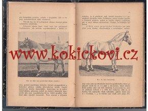 Pojednání o chovu plemenech, plemenitbě a nemocech koní 1895 - KOŇAŘSTVÍ - BEZDÍČEK
