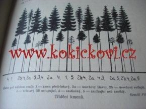 Stručný nástin tvorby a pěstění lesů KONŠEL 1931 BIBLE LESÁKŮ