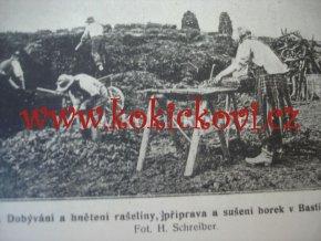 O RAŠELINÁCH - TĚŽBY VYUŽITÍ VÝSKYT ROK 1924