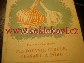 PĚSTOVÁNÍ CIBULE ČESNEKU A PÓRKU 1957