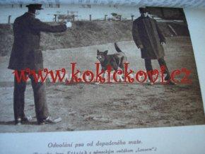 POLICEJNÍ PES, JEHO VÝCHOVA A VÝCVIK  PRAHA 1926