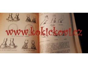 ZVĚROLÉKAŘSKÁ ČÍTANKA 1925 NEMOCE KONÍ OVCÍ KOZ ATD - kapitola podkovářství