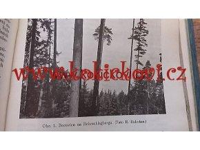 LESNICKÁ PRÁCE - 17. ROČNÍK  1938 pěkný stav