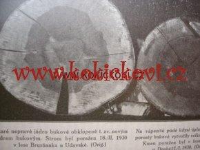 LESNICKÁ PRÁCE - 10. ROČNÍK  1931 pěkný stav